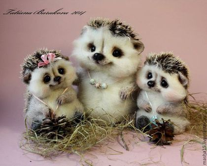 Семья ёжиков / Hedgehogs family